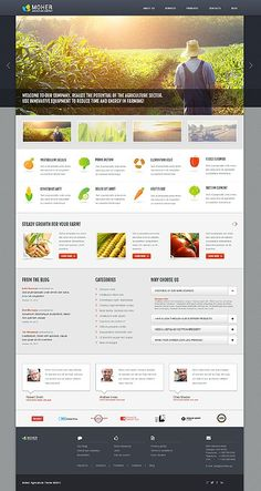 'Moher Agriculture' WordPress 3.x Template 45717 http://zign.nl/45717