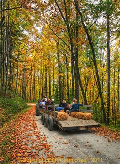 The joy of a fall hayride. I