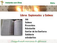 La sabiduría de Dios debe ser constante búsqueda de quien vive la fe y el amor a Dios