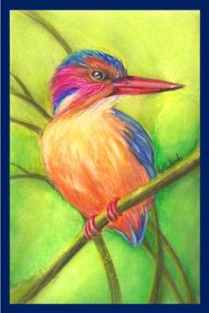 African Pygmy Kingfisher - Watercolour by Colour-My-Heart.deviantart.com on @DeviantArt