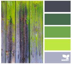 Scheme Color, Colour Pallette, Color Palate, Colour Schemes, Color Combos, Color Patterns, Green Palette, Design Seeds, Palette Verte