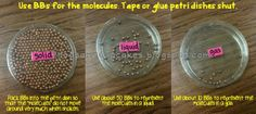Visual for molecules in solids liquids and gases (if you don't have petri dishes use empty CD cases)