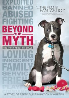 October is National Pit Bull Awareness Month! We support our pitties %! October is National Pit Bull Awareness Month! We support our pitties %! I Love Dogs, Puppy Love, Pitbulls, Dobermans, Dog Fighting, Pit Bull Love, Dogs And Puppies, Doggies, Doberman Puppies