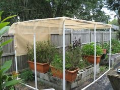PVC And Shade Cloth To Keep Tomatoes Going In The Heat Landscape Ideas Shade Garden Garden