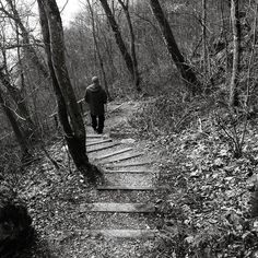 ... picture from todays Sunday hike with my hubby ... . . .  #sombreescapes #darknature #romantic_darkness #follow_the_grey_sky #romantic_noir #soulful_moments #starlings_sanctuary#gloomgrabber#wanderlust#forestlovers #forest_captures #forest_masters #darkforest #woods #hiking #outdoors#natureaddict #naturelovers  #bnw_lightandshadow #kd_blackandwhite #bnw_mania_ #pocket_bnw#jj_blackwhite #bnw #landscape_lovers #artisartcommunity  #ig_countryside #bnw_switzerland#ig_swisspictures taken and…