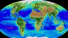 O mapa dinâmico divulgado pela agência norte-americana poderá ser uma ferramenta importante para mostrar as consequências reais do aquecimento global.