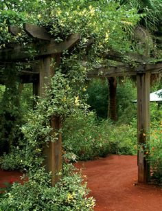 From one of my favorite places in GA - the State Botanical Garden in Athens.  Would love to recreate.
