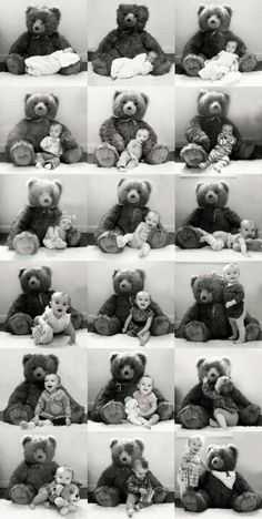 Photo Growth Chart by Teddy Bear