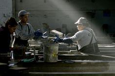 Estamos en pleno desarrollo de nuestra área de control de calidad. En las imágenes vemos a Mitzi Vielma, encargada de esta unidad, junto a Juan Jeréz y Pablo Mayo operarios en esta actividad.  www.baldosascordova.cl