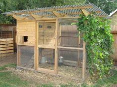 my-diy-chicken-coop-in-the-backyard