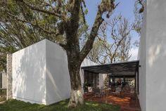 Gallery of Casa del Abuelo / Taller DIEZ 05 - 9