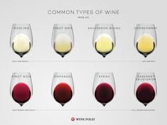 8 common types of wine to know http://winefolly.com/review/common-types-of-wine/