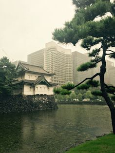 Imperial palace #japan