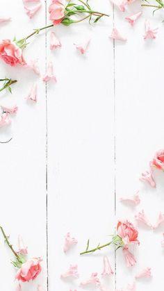 flower wallpaper for iPhone?flower wallpaper for iPhone?flower wallpaper for iPhone?