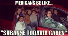 Haha, this reminds me of when we had a van..