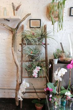 This Manhattan flower shop knows the perfect way to use a short ladder: Cover it in lots of greenery. Leafy flowers and old wood create a rustic, natural vignette. Click through for more on this and other ways to repurpose and use old ladders as home decor.