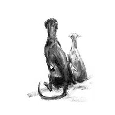 Patience two sighthounds fine art dog print от paintmydog