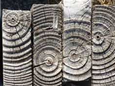 margadirube:  afrikani: Weathered wood posts, Signal Hill, Cape Town. Photo ©afrikani