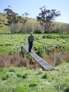 A new bridge on the Heysen Trail over the creek at Bundaleer weir, near the new campsite, avoiding the steep banks of the creek.