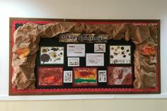 3-D bulletin board display. The Stone Age: Cave paintings. - Saved you a Spot, Primary Education Blog.