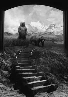 "Jerry Uelsmann's ""Untitled'' 1996. Before Photoshop allowed image makers to bend reality to their will with a single keystroke there was Jerry Uelsmann. He created surreal images the hard way — not with digital shortcuts, but working in a darkroom with seven enlargers and multiple negatives."