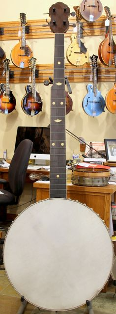 [2016] A. C. Fairbanks Whyte Laydie Contrabass Banjo