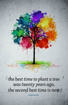 """""""The best time to plant a tree was twenty years ago. The Second best time is now"""""""
