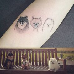 Pomeranian dog tattoos on the right forearm. Tattoo artist: Doy