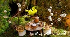 Finalists :: Fairy Garden Contest :: 2013 - The Magic Onions