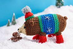 Cuddly Bear Crochet Project