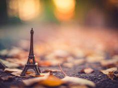 La tour Eiffel, асфальт, боке, листья, осень, подставка, размытость, статуэтка, сухие, эйфелева башня
