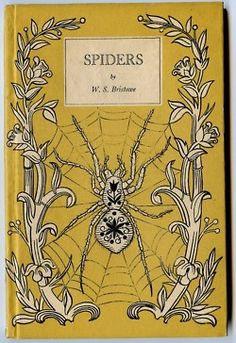 spiders - this would make a great cutaway book, very pretty