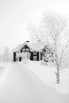 Ooooh snow covered house one day I will get to experience a winter like this! . Soooo pretty clean and white