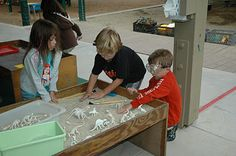 Dino Dig- Dramatic Play Outdoors