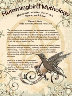 Hummingbird Mythology – Messenger between the Worlds – Witches Of The Craft® Hummingbird Quotes, Hummingbird Symbolism, Hummingbird Tattoo Meaning, Animal Spirit Guides, Spirit Animal, Magick Spells, Witchcraft, Animal Totems, Book Of Shadows