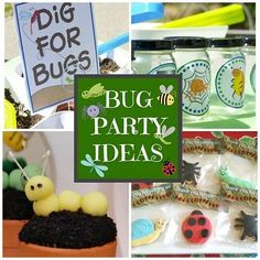 Grab all the critters and throw an awesome bug party!