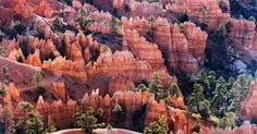 The most visited parks in the U.S. are popular for a reason.