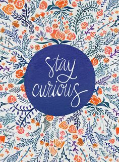 Stay Curious – Navy & Coral Art Print by Cat Coquillette | Society6