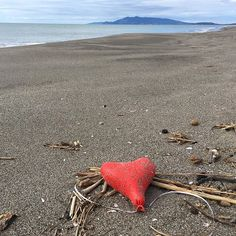 Ciò che resta di #sanvalentino  Valentines Day  legacy #marinelitter #baloons #marinedebris #valentinesday