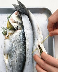 Best branzino or other white fleshed fish fillets recipe for Best white fish to eat