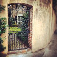 #Charleston, S.C.