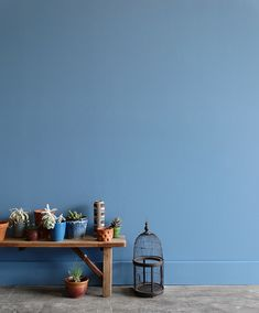 lilac blue wall paint inspired by rio and the olympics / sfgirlbybay Winter Color, Spring Colors, Blue Painted Walls, Blue Walls, Azul Niagara, Niagara Falls, Pantone 2017 Colour, 2017 Colors, Pale Dogwood