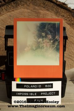 10 Best Polaroid 600 images in 2016 | Impossible project