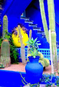 Jardins de Majorelle - Marrakech : Photos de voyage, Yves Saint-Laurent, Maroc, blog mode, blog voyages, Eos Canon.