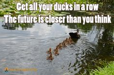 Get all your ducks in a row – The future is closer than you think – Health Manifested Great Quotes, Inspirational Quotes, Motivational Quotes, Duck Quotes, Disloyal Quotes, Life After High School, Law Of Attraction Meditation, Encouraging Thoughts, Sayings And Phrases