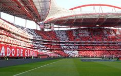 SPORTS And More: #Portugal #SLBenfica #CarregaBenfica #Benfica atte...
