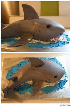 Shark birthday cake for a 5-year-old boy. The cake is vanilla with marshmallow fondant. Shark teeth are gumpaste (and edible!).