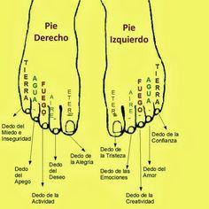 """""""Los pies reflejo de la personalidad"""" Según est e libro de Imre Somogyi , mediante la lectura de los dedos de los pies podemos obte..."""