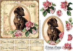 Vintage Puppy on Craftsuprint designed by Bodil Lundahl - Here's a square image with an oval, pearl framed picture of a very cute vintage dachshund puppy posing for the crafter. Only two lovely decoupage vintage roses in one corner are decorating the picture, which leaves the final finish up to the crafters creativity. Six tags are included. - Now available for download!