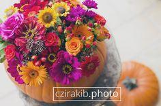 Ősz 2014 | Autumn 2014  www.czirakib.photo